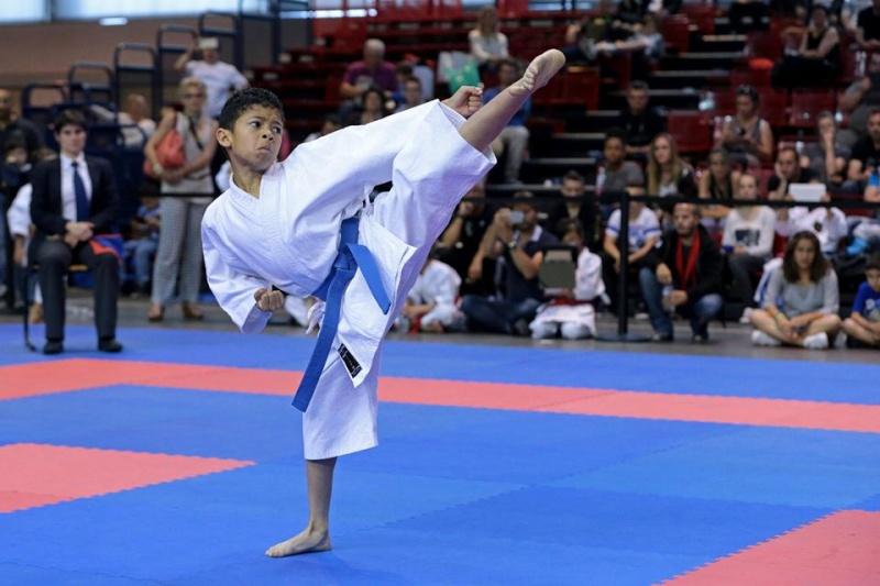 Coupe de France Kata et Combat mai 2015 Yoko_v10