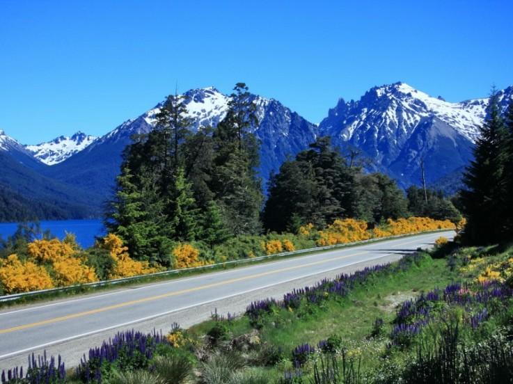 La Mítica ruta 40 en Argentina. Aspectos generales. Ruta_410