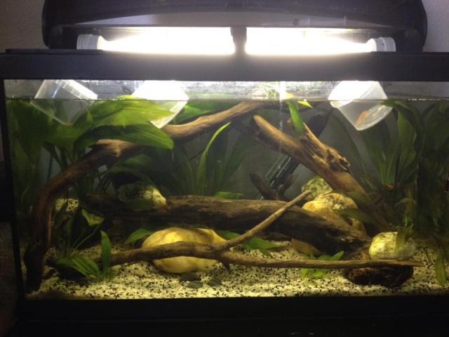 Mon Aquarium 54L 11350210