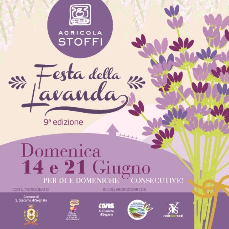 FESTA DELLA LAVANDA -San Giacomo delle Segnate - DOMENICA 14 E 21 GIUGNO Festal10