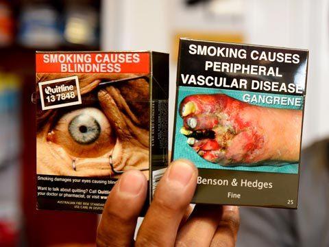 Buralistes : «Nous voulons être associés à la baisse du tabagisme» - Page 4 563a3810