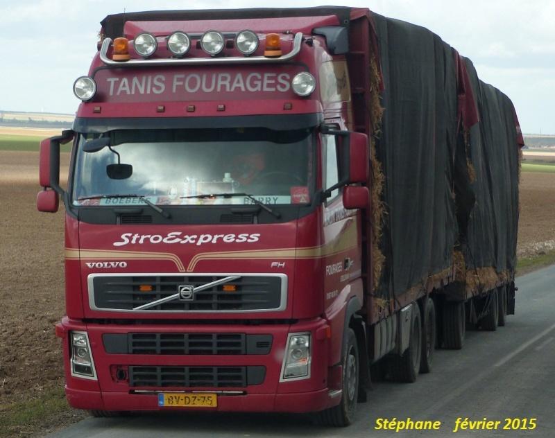 Tanis Fourages (Steilendam) P1300726