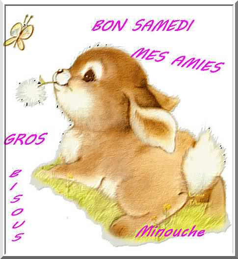 BONJOUR-BONSOIR DU MOIS D'AOUT - Page 4 28hq4a10