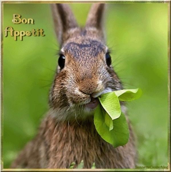 BONJOUR-BONSOIR DU MOIS D'AOUT - Page 4 Bon-ap33