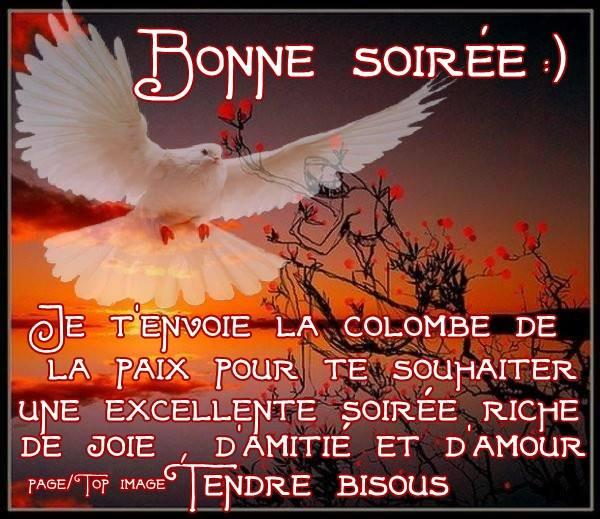 BONJOUR-BONSOIR DU MOIS D'AOUT - Page 3 Bonne-21