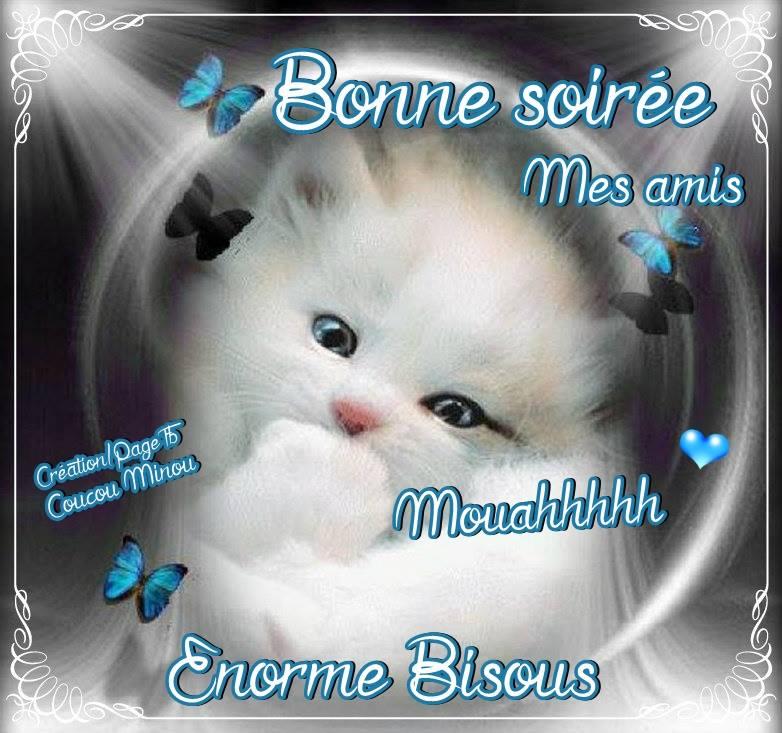 BONJOUR-BONSOIR DU MOIS D'AOUT - Page 4 Bonne-25