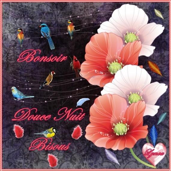 bonjours  bonsoirs du mois  juin  Url114