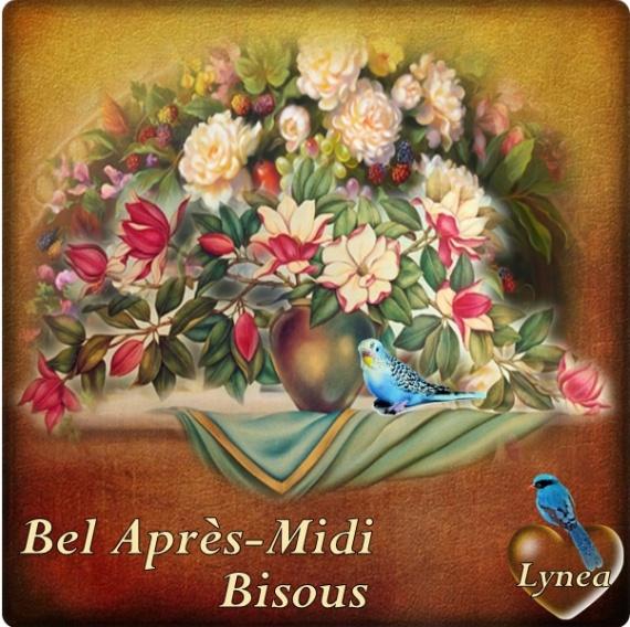 bonjours  bonsoirs du mois  juin  Url124