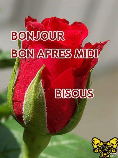 BONJOUR-BONSOIR DU MOIS D'AOUT - Page 4 Yjwps510