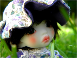 [Azu-Mi's dolls] Elia [Cameo, Marmite Sue Doll] *news* Dscn4020