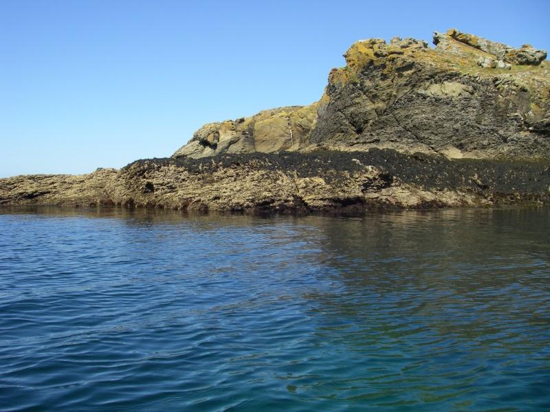 L'île de Groix en kayak Imgp0020