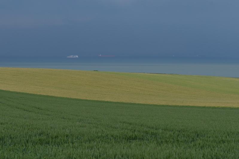 Vues sur mer P1010114