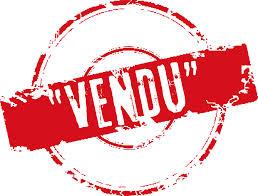 Action cam de chez sony Vendu10
