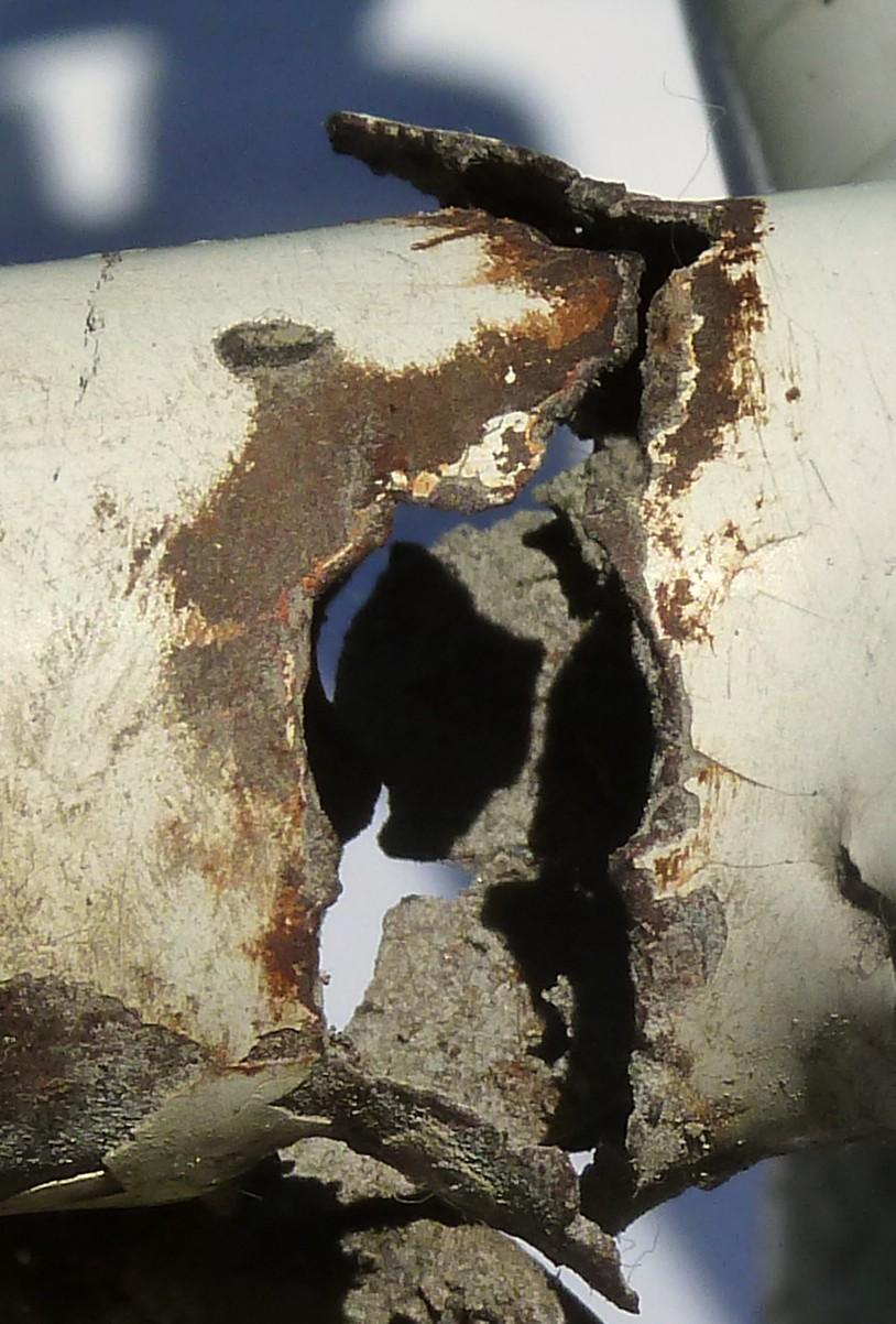 Corrosion du cadre : traitement préventif [anc. Obsolescence programmée du Brompton] - Page 4 Triang12