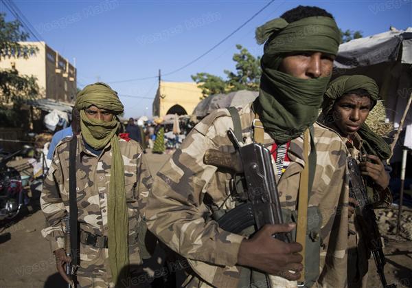 Intervention militaire au Mali - Opération Serval - Page 3 019