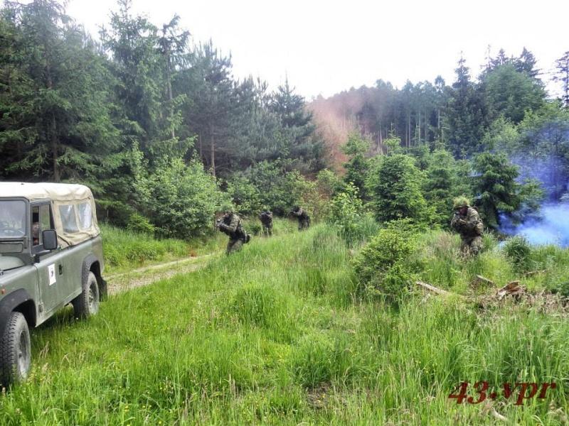 Armée tchèque/Czech Armed Forces - Page 6 1127