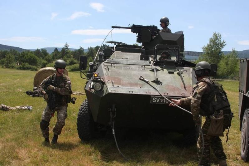 Slovenian Armed Forces / Slovenska vojska - Page 2 1a52