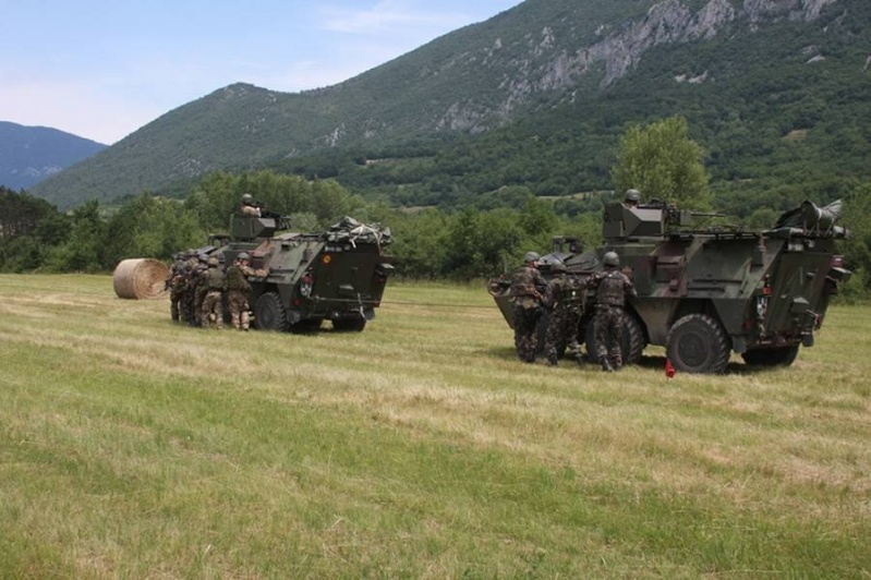 Slovenian Armed Forces / Slovenska vojska - Page 2 1d23