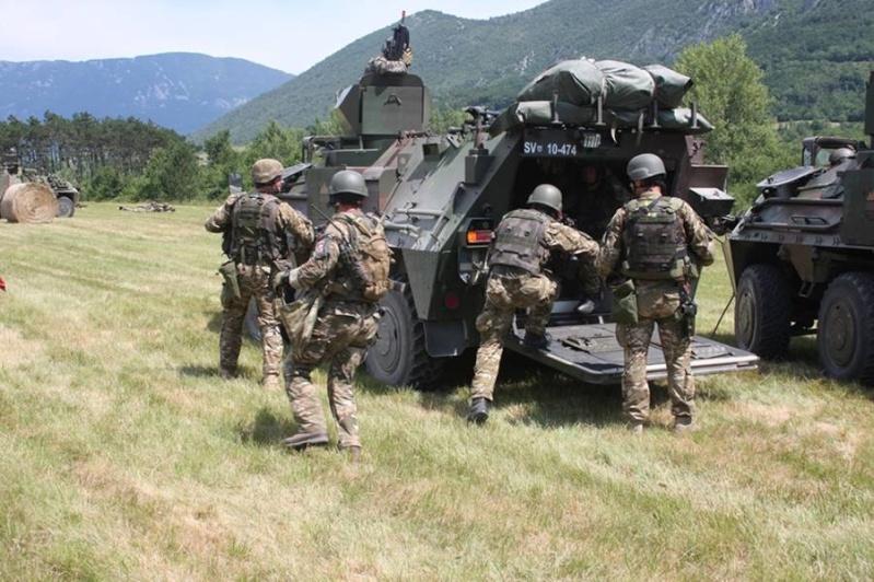 Slovenian Armed Forces / Slovenska vojska - Page 2 1f115