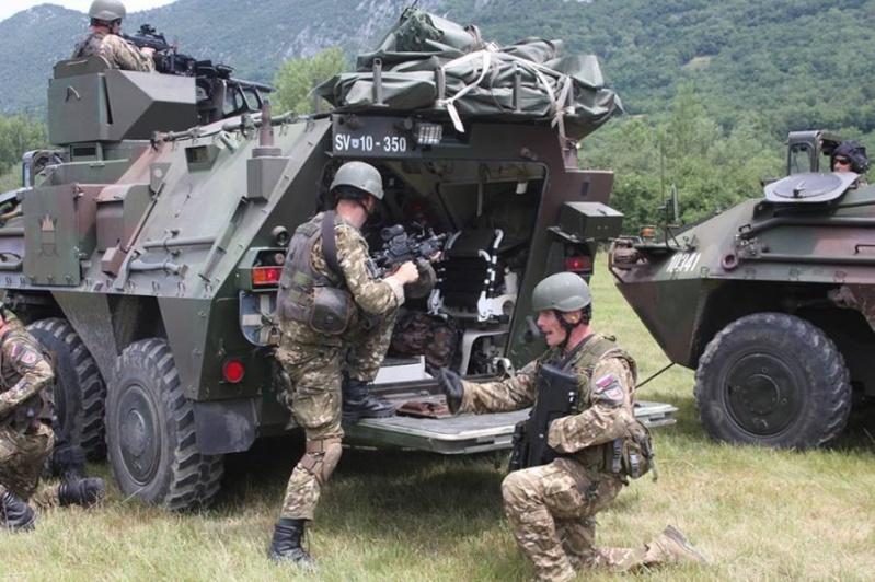 Slovenian Armed Forces / Slovenska vojska - Page 2 1f215