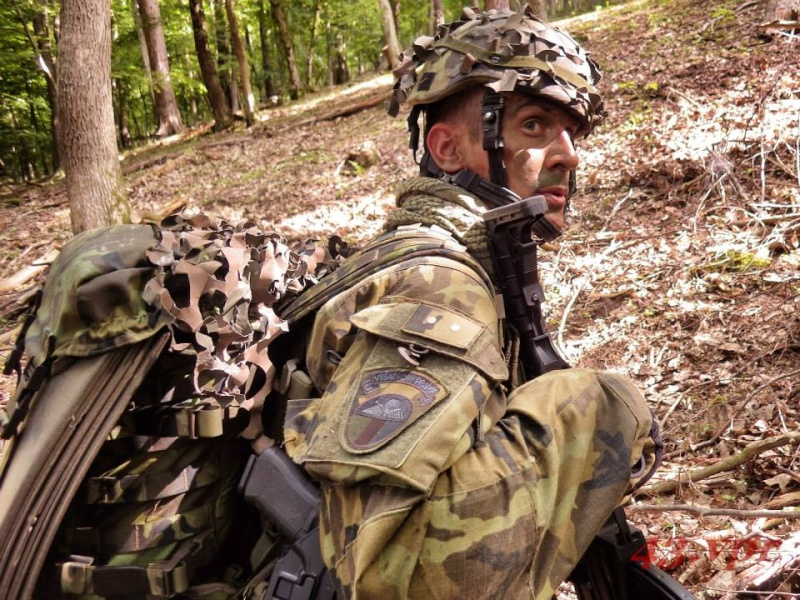 Armée tchèque/Czech Armed Forces - Page 6 2015