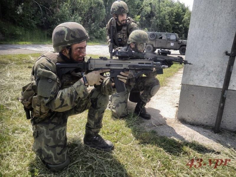 Armée tchèque/Czech Armed Forces - Page 6 2910