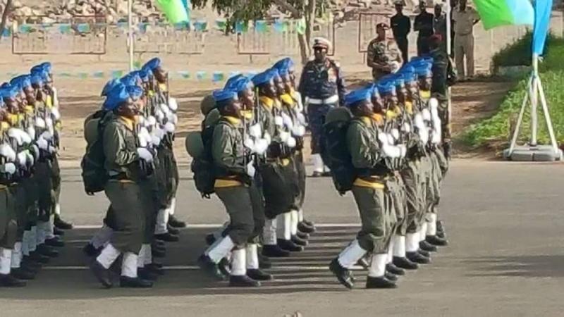 Armée djiboutienne / Djibouti National Army - Page 2 2a13
