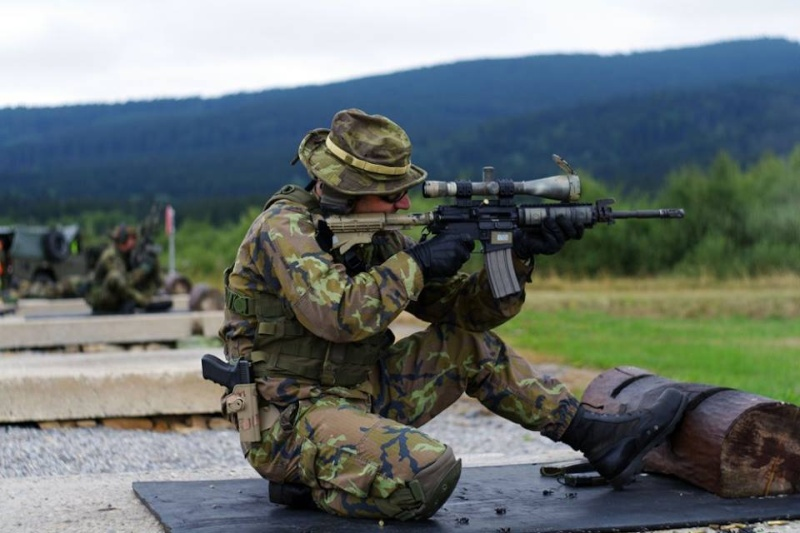 Armée tchèque/Czech Armed Forces - Page 7 3268