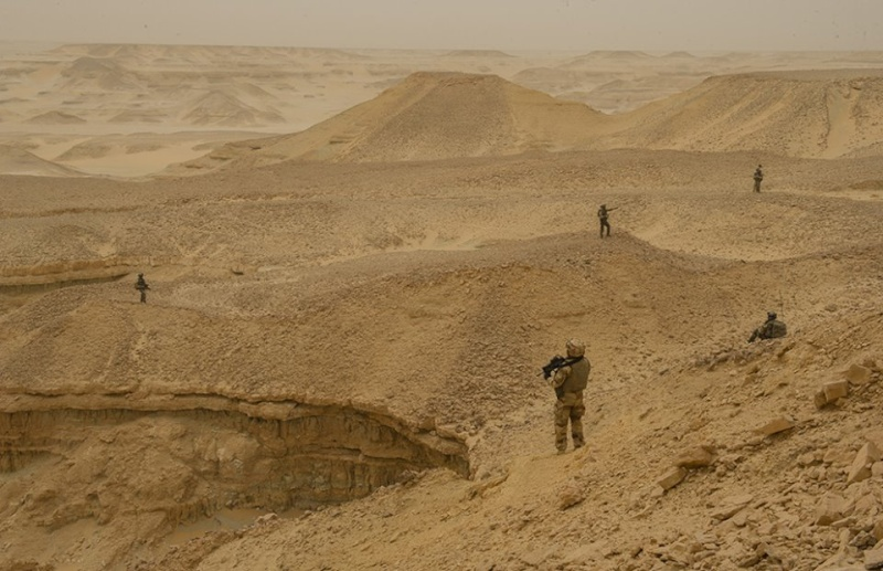 Intervention militaire au Mali - Opération Serval - Page 3 452