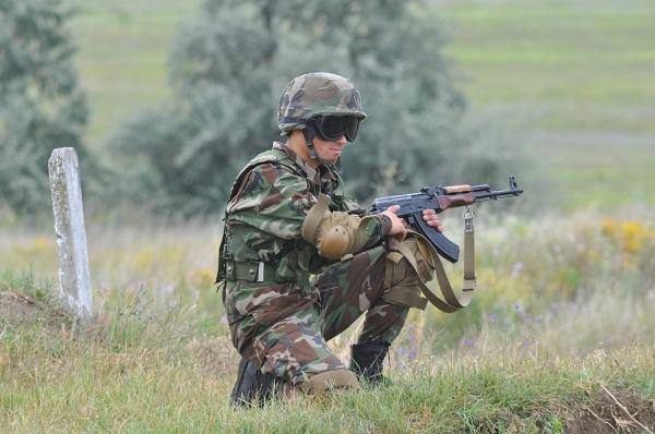 Forces armées moldaves 461