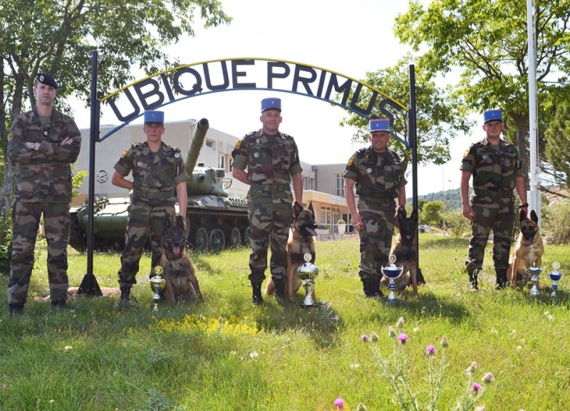 Animaux soldats - Page 5 824