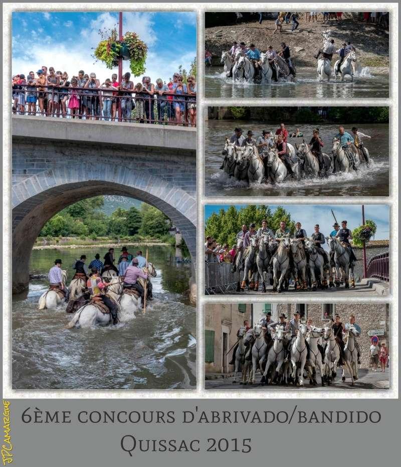 6 ème concours d 'Abrivado/Bandido Quissac ( 14/08/2015 ) _dsc7810