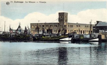 Archives de Zeebrugge - Page 2 Nfwywd10