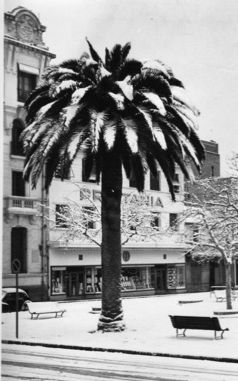 HIVER 1954 A SIDI BEL ABBES Img51110