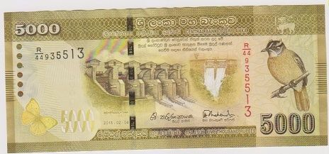 Money printing passes 300% mark 5000no10