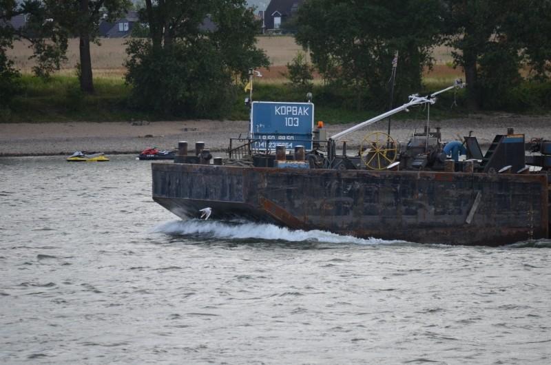 Der Rhein bei Mondorf am 22.07.2015 Dsc_1013