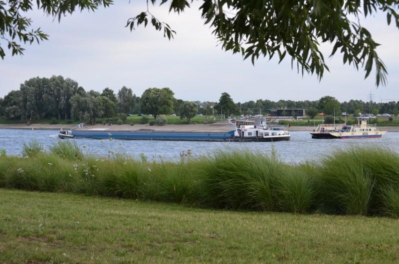 Der Rhein bei Mondorf am 22.07.2015 Dsc_1018