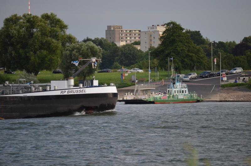 Der Rhein bei Mondorf am 22.07.2015 Dsc_1024