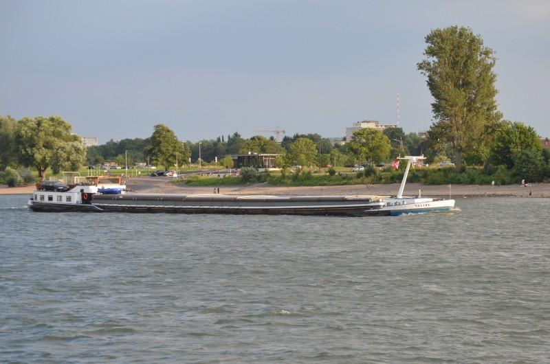 Der Rhein bei Mondorf am 22.07.2015 Dsc_1027