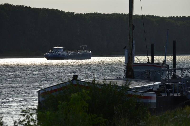 Der Rhein bei Mondorf am 22.07.2015 Dsc_1028