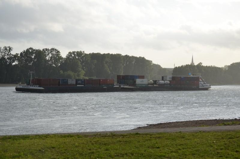 Der Rhein bei Mondorf Nachschlag Dsc_1311