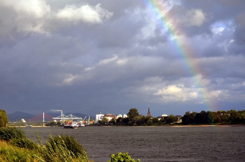 Der Rhein bei Mondorf Nachschlag Dsc_1312