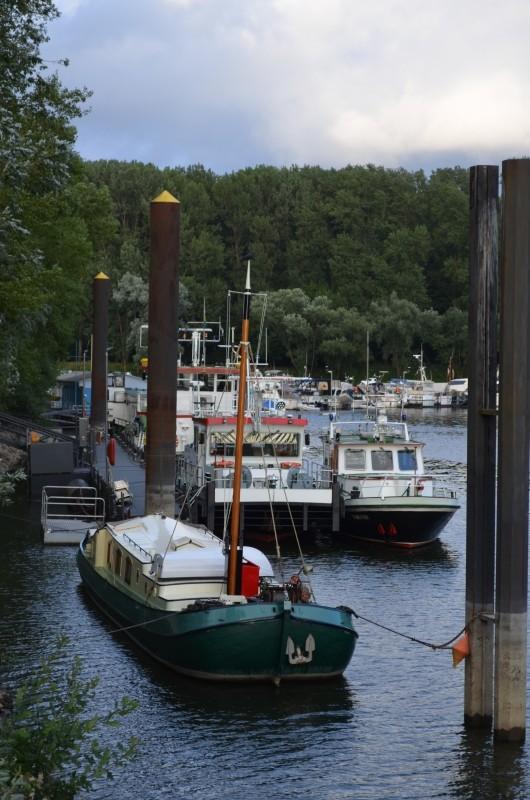Der Rhein bei Mondorf Nachschlag Dsc_1316