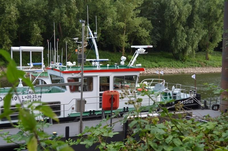 Der Rhein bei Mondorf Nachschlag Dsc_1318