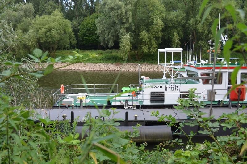 Der Rhein bei Mondorf Nachschlag Dsc_1319