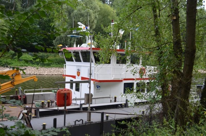 Der Rhein bei Mondorf Nachschlag Dsc_1320