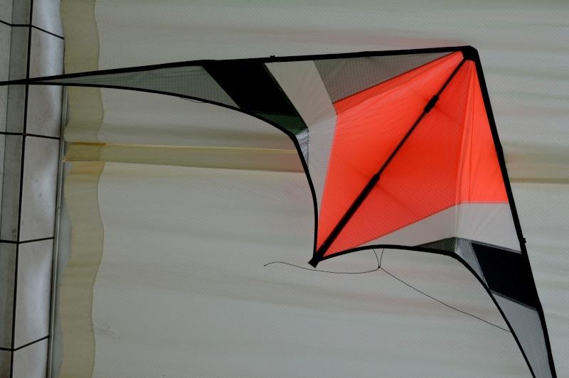 Benson Superfly STD Dsc_0210