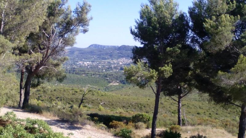 Deux trois photos des hauteurs du Castellet ce week du 21 juin 2015  Img_2012