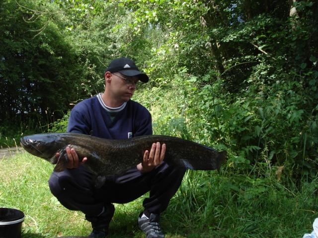Résultat de mes 4 dernières pêches. Dsc01412