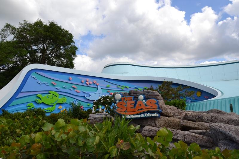 Disneymoon : Walt disney world & Disney cruise line mai 2015  - Page 2 Dsc_0013